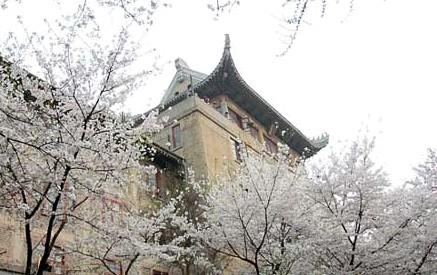 武汉大学ppt 背景